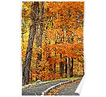 Amber in Autumn Poster