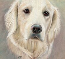 Charlie by Karen  Hull