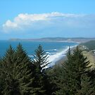Port Orford Head to Cape Blanco by Bryan D. Spellman