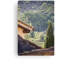 tuscan roofs Canvas Print