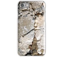 Split Personality iPhone Case/Skin