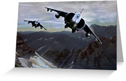 Harrier Hunters by Bob Martin