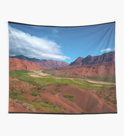 a wonderful Argentina landscape Wall Tapestry