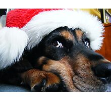 I am sure, I won't miss out with Christmas.  Photographic Print