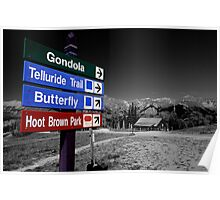 Signs of Telluride Poster