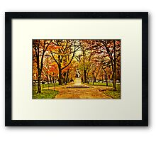 Commonwealth Ave in Boston Framed Print
