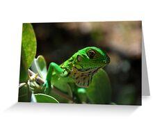 Baby Iguana Greeting Card