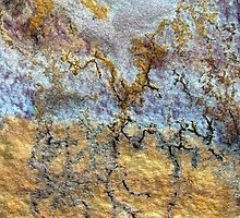 Ambient Dreams by Kathie Nichols