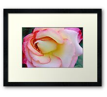 Innocent Blush Framed Print