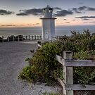 Always Vigilant  Cape Liptrap National Park  Victoria by William Bullimore