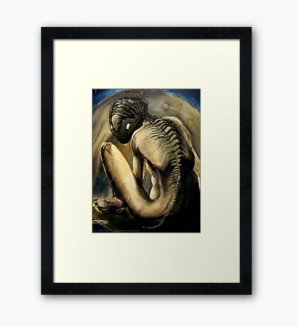 My Life With Trilobites - detail Framed Print