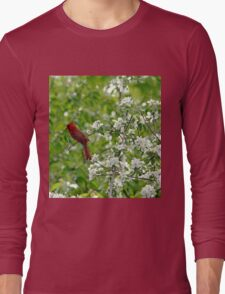 Bird And Blossoms Long Sleeve T-Shirt