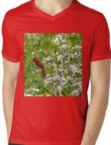 Bird And Blossoms Mens V-Neck T-Shirt