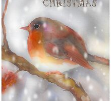robin watercolor merry christmas by aquaarte