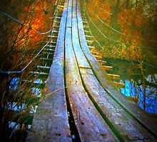 Suspension Bridge Ida Grove Iowa by Linda Miller Gesualdo
