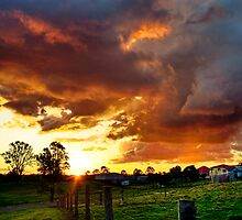 Of Rain, Sunset Cloud and Grass by Mel Sinclair