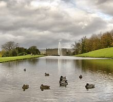 Chatsworth House: Derbyshire by Steven  Lee