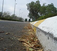 Beginning of the road by mohammad-