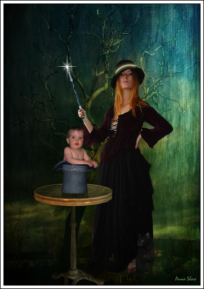 The Magician by Anna Shaw