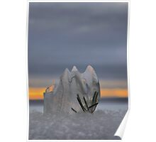 Winters Iced Poster
