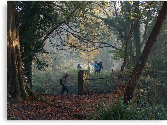 Walking in the Autumn Mist at the Blaise Castle Estate, Bristol. by Clive Lewis-Hopkins.