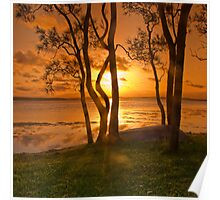 sunset - st georges basin australia Poster