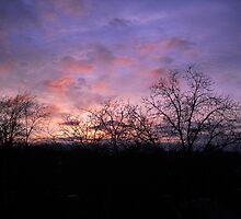 Evening. by Vitta