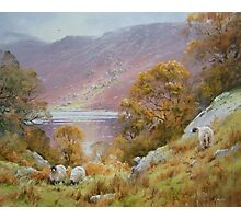 Above Grasmere, Cumbria, England Photographic Print