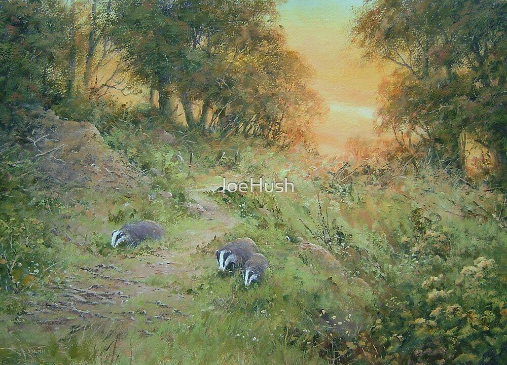 Badger Lane by JoeHush