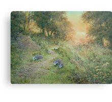 Badger Lane Metal Print