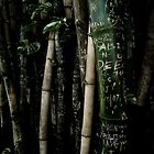 Bamboo Love by StuartGLoch