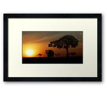 Sunset Elephant - Masai Mara Framed Print