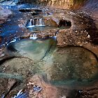 Glowing Stone Pools, Zion Subway, Utah by Alan C Williams