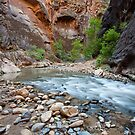 Glowing Walls and Flowing Water, Zion National Park, Utah by Alan C Williams