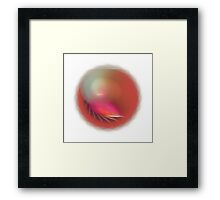 APO No. 7 Dusty Red Framed Print