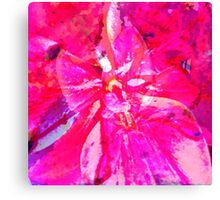 Pink Flower Digital Photography and Prints Canvas Print