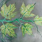 August Peridot Maples by linmarie
