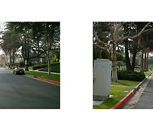 Arden Boulevard & 6th Street, Hancock Park, Los Angeles, California, USA...narrowed. by David Yoon