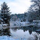 snowy pond by tego53