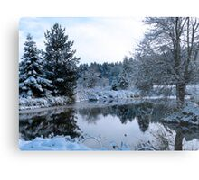 snowy pond Metal Print