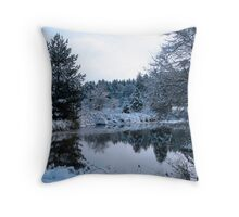 snowy pond Throw Pillow