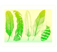 Lime Feathers Art Print
