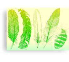 Lime Feathers Metal Print