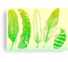 Lime Feathers Canvas Print