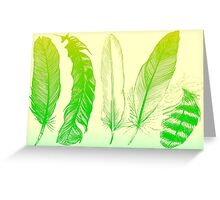 Lime Feathers Greeting Card