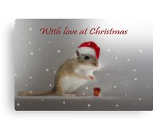 With love at Christmas Canvas Print