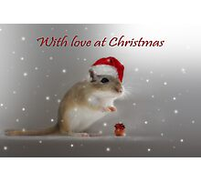 With love at Christmas Photographic Print