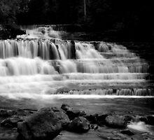 """Liffey Falls, top, B&W"" by Husky"