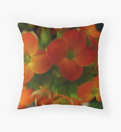 Orange Zest Flowers Throw Pillow