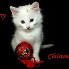 Merry Christmas Kitty by SharonD